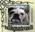 Mantovanelli Bulldog Inglesi