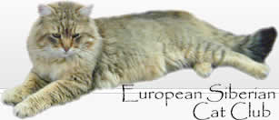 European Siberian Cat Club